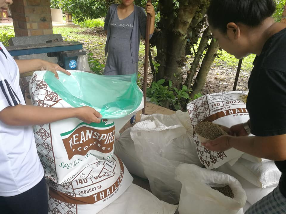 Fine robusta coffee being inspected and packed for shipping at Mae Kha jan washing station